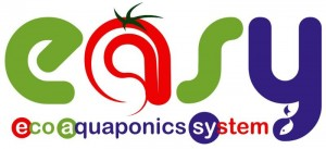 easy logo y III